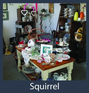 Squirrel - Business Directory