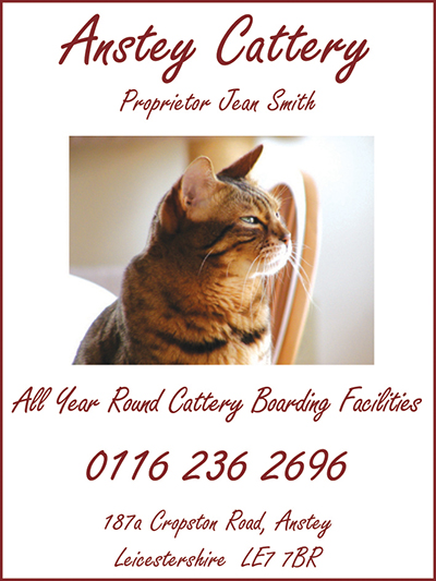 Anstey Cattery advert WEB